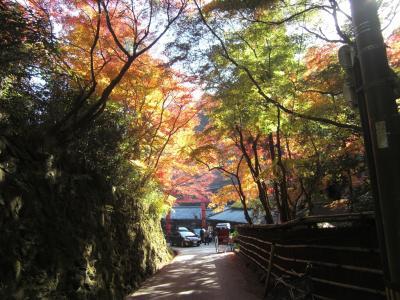 高雄から嵐山へ、季節外れの暑さの中を東海自然歩道てくてく歩き