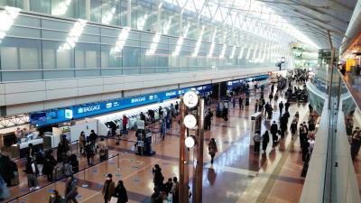 羽田→函館→羽田☆飛行機で帰省☆