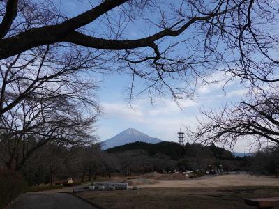 自転車&散歩で岩本山公園へ 2021.01.05