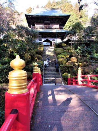 魅力度最下位の栃木県を歩く。2021年新春に雲岩寺へ那珂川で白鳥の姿を見ることができました。