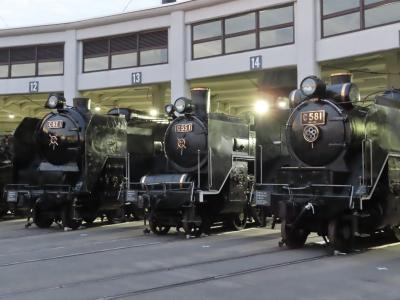 「京都水族館、京都鉄道博物館」に行ってきたにゃ!