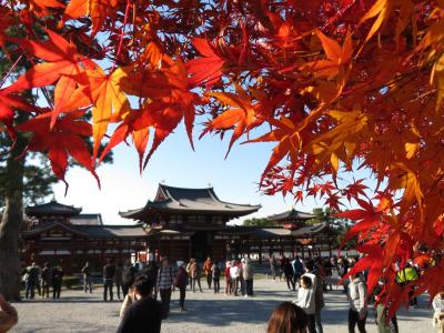 秋の京都、紅葉の石清水・宇治へ