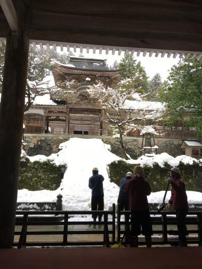 202012 GoTo雪の福井で気の向くまま1