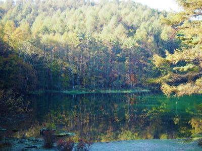 御射鹿池の鏡に映ったような木々の景色が見たくて長野へ日帰りドライブ