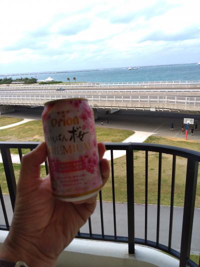 週末海を見ながらビールが飲みたくなって沖縄へ~1日目那覇市内ぶらぶら