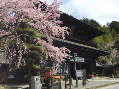 身延山久遠寺と温泉