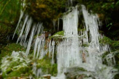自然が作りだした氷の芸術品