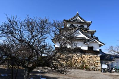 国宝の天守、彦根城