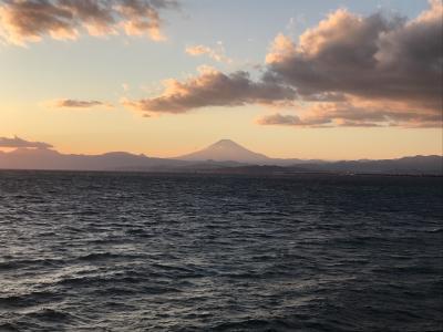 2021年の正月は東京から神奈川の実家をママチャリで往復してみました