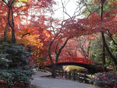 JAL特典航空券で行く、奈良~京都一人旅♪2日目☆北野天満宮・三十三間堂・南禅寺・平安神宮