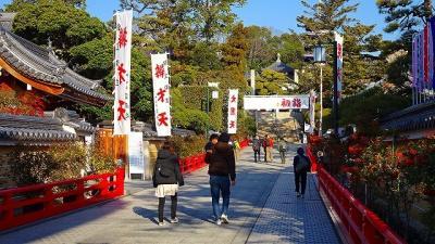 宝塚市中山寺の参拝と、帰りにプラザ・コムに立ち寄りましたが菊花はなかった その1。