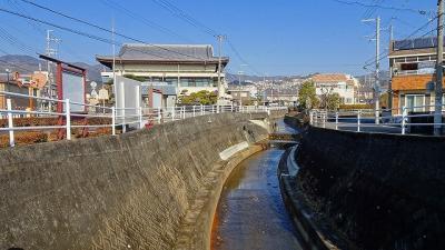 宝塚市中山寺の参拝と、帰りにプラザ・コムに立ち寄りましたが菊花はなかった その3。