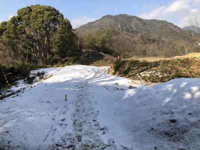 雪化粧の城山ハイキング