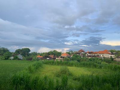 今朝のバリ島