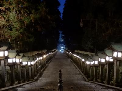夕暮れ時の「宝山寺 参道」は 神秘で 妖艶 (参道にあった遊郭の歴史)