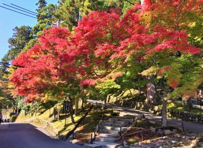ひと足早く秋を感じに比叡山へGo♪