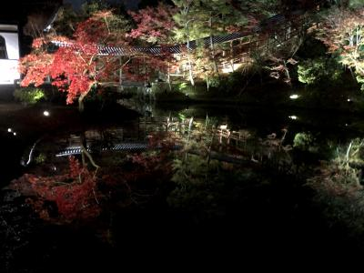 Go To Travelで秋の京都・滋賀へ(第1日)