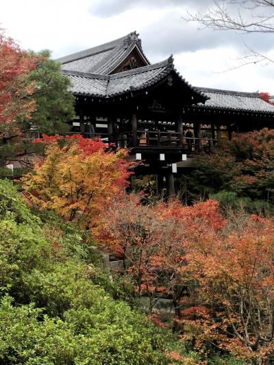 Go To Travelで秋の京都・滋賀へ(第2日)