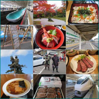 錦秋の南東北2020(1)東北新幹線グリーン車で仙台へ&ホテルで鮭はらこめし