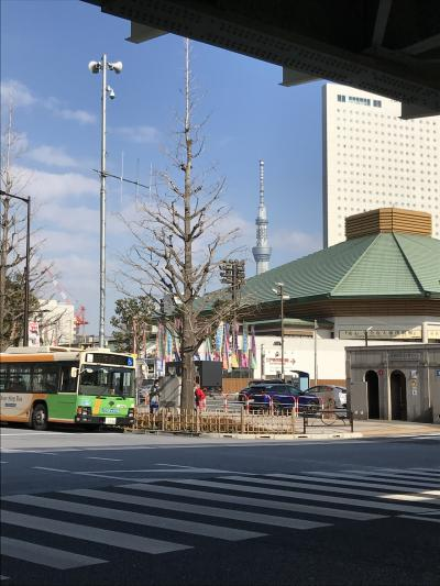 コロナ禍の大相撲初場所観戦記