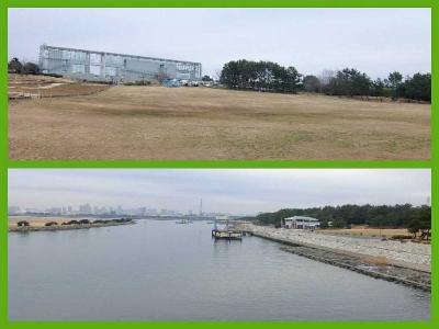 葛西臨海公園は広くてよく整備されており散策には良かった