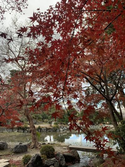 京都でのんびりひとりステイ