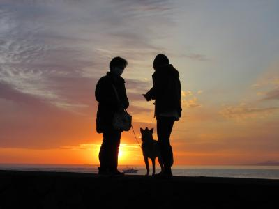 2020年12月27日:たまには家族でロングドライブ 西伊豆をベタに観光(後編) 堂ヶ島食堂~黄金崎~戸田の美しい夕日