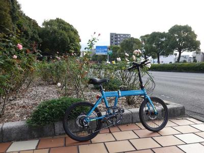 自転車でGO! 2020.10.30 富士市内をウロウロ…