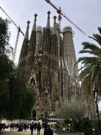 25年ぶり4回目のバルセロナ・ビフォーコロナの団体?旅5:再びサクラダファミリア、だらだら街歩き