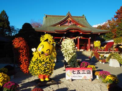 買い物行くついでに笠間稲荷神社へ寄って笠間菊まつりをちょっとだけ見てきました