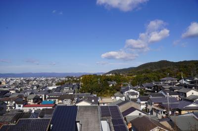20210125-2 京都 泉涌寺と塔頭を巡ってみる