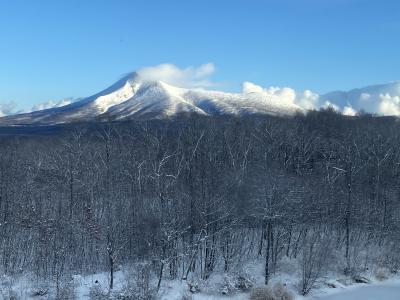 通勤も命がけ、寒波襲来の函館大沼で凍り付くお正月