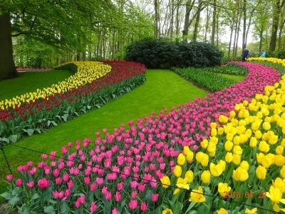 色とりどりの花と名画に触れるベルギー・オランダの旅9日間 後編 …