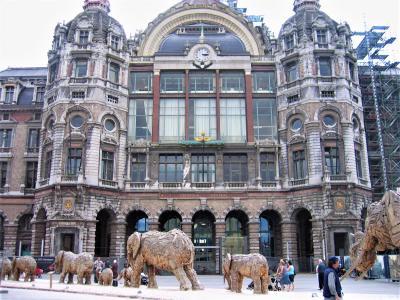 ベルギーのアントワープ(2007年)