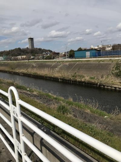 江ノ島駅から湘南台駅まで境川沿岸を歩く