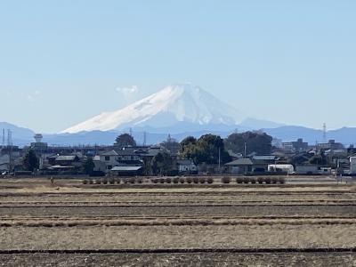 2021年1月 レンタサイクル 埼玉・富士見市で富士山観賞