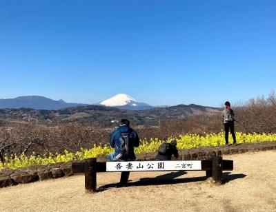 菜の花を見に吾妻山へ そして相模国六社巡り(川勾神社)