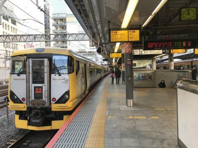 「新宿さざなみ」で行く館山の旅