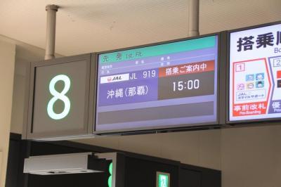【重要レポート】修行フライトの真実