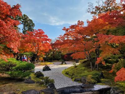 秋の平泉&松島の旅*2日目*