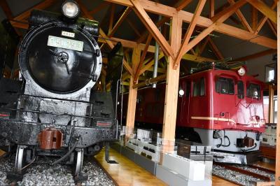 長浜盆梅展、鉄道館、黒壁の街並みと豊国神社
