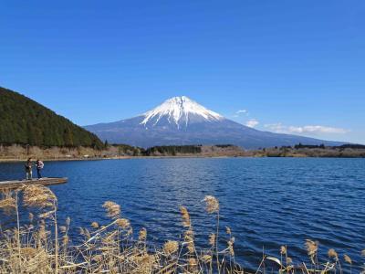 【続編】2021年1月、雪の積もった富士山