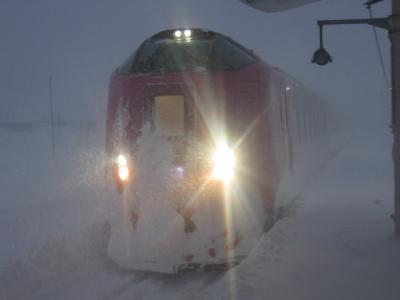 2021冬・年始の北海道旅行(パート1:吹雪の美深駅にはまなすちゃんがやって来てくれたよ~)