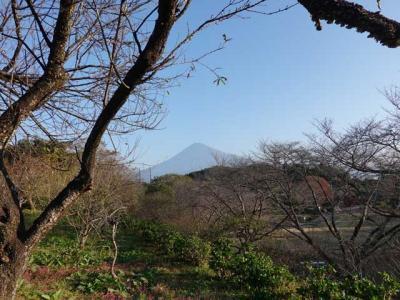 自転車でGO! 2020.11.17 紅葉を見に岩本山公園へ。