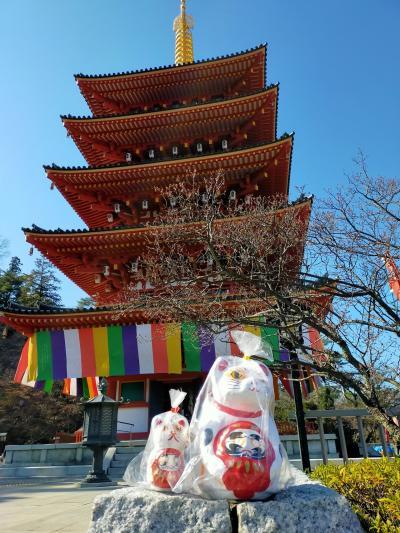 俺の東京 高尾山と高幡不動で節分会をはしご編 抱きだるま猫も買いました