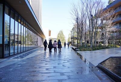 Japan 雨あがりのしあわせ グリーン・スプリングス ~ミツバチばあやの冒険~