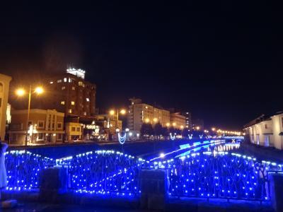 Go toで団体ツアーに初参加「Sランクホテルに宿泊するフルムーン北海道」③グランドパーク小樽