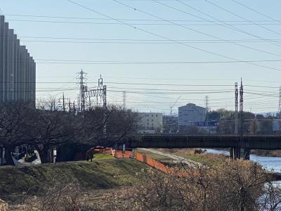 2021年1月 埼玉・柳瀬川で富士山観賞にトライ