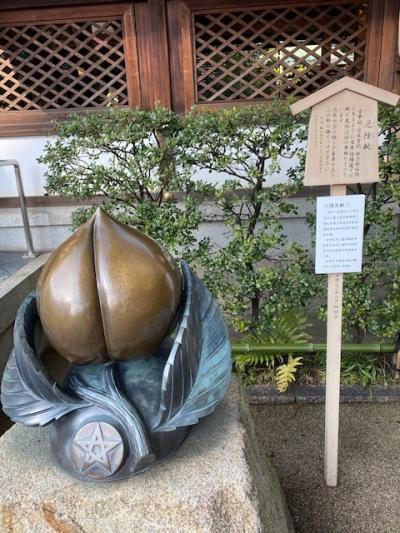 沖縄からの~京都でおいしいビールを飲みたい旅