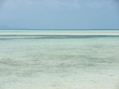 石垣の夏色の海々